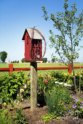 Photograph - Bird House by Lawrence Burry