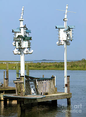 Old School Houses Photograph - Bird Houses On Lbi by John Rizzuto