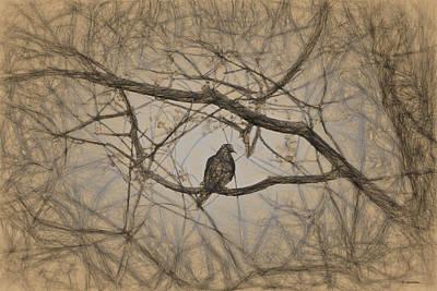Digital Art - Bird In A Tree I by Cathy Jourdan