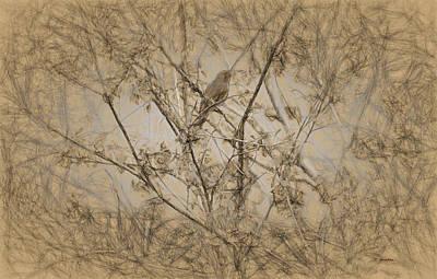 Digital Art - Bird In A Tree IIi by Cathy Jourdan