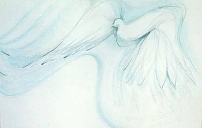 Drawing - Bird In Flight by Denise Fulmer