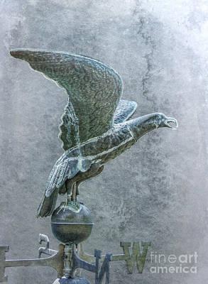 Weathervane Digital Art - Bird In Flight Weathervane by Randy Steele
