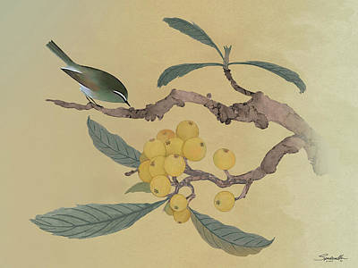 Digital Art - Bird In Loquat Tree by M Spadecaller