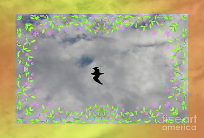 Photograph - Bird In The Air by Donna Munro