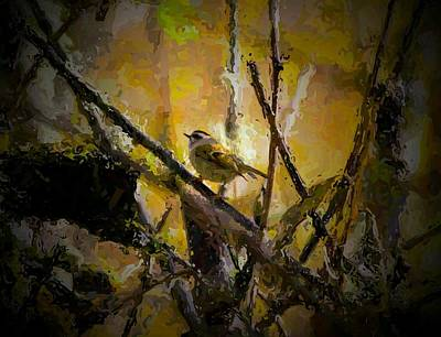 Paint Photograph - Bird In The Forest by Ca Photography