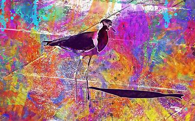 Lapwing Digital Art - Bird Lapwing Redwattled Fauna  by PixBreak Art