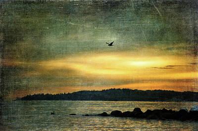 Photograph - Bird Meets Bird by Randi Grace Nilsberg
