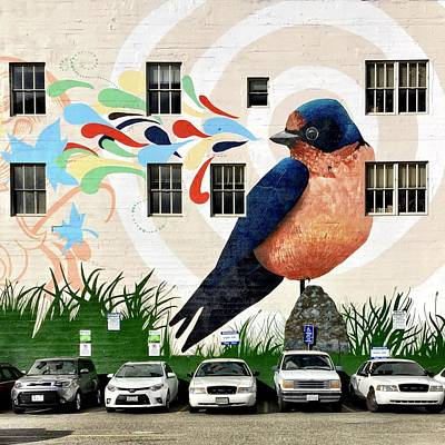 Wall Art - Photograph - Bird Mural by Julie Gebhardt