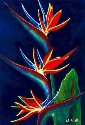 Bird Of Paradise #161 Art Print by Donald k Hall
