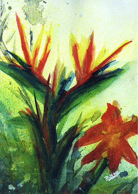 Bird Of Paradise, #177 Art Print by Donald k Hall