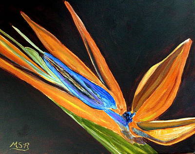 Bird Of Paradise 2 Art Print by Maria Soto Robbins