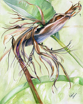 Painting - Bird Of Paradise, A Faded Beauty by Nadine Dennis