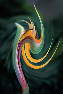 Photograph - Bird Of Paradise Abstract 2 by Rick Strobaugh