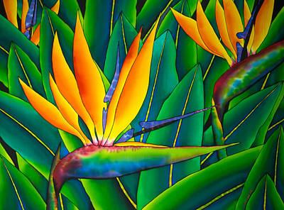 Bird Of Paradise Art Print by Daniel Jean-Baptiste