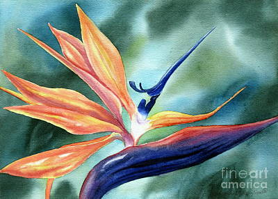 Bird Of Paradise Art Print by Deborah Ronglien