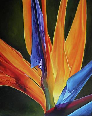 Painting - Bird Of Paradise by Elise Procter
