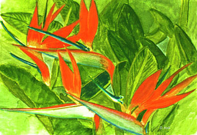 Bird Of Paradise Flower #55 Art Print by Donald k Hall