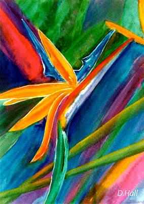 Bird Of Paradise Flower #66 Art Print by Donald k Hall