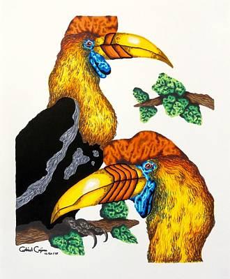Drawing - Bird Of Paradise by Gabriel Cajina