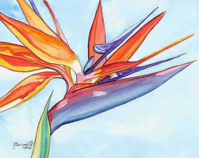 Bird Of Paradise IIi Art Print