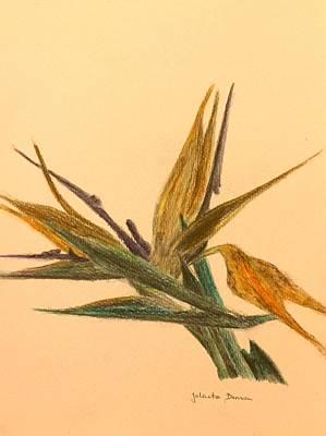 Strelitzia Mixed Media - Bird Of Paradise by Jolanta Benson