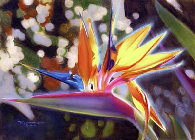 Pastel - Bird Of Paradise by Melissa Herrin