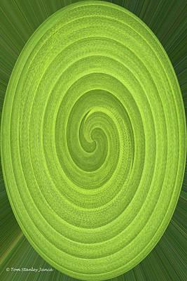 Digital Art - Bird Of Paradise Spiral Abstract by Tom Janca