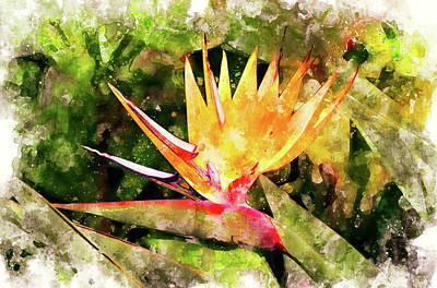 Digital Art - Bird Of Paradise Wc by Peter J Sucy