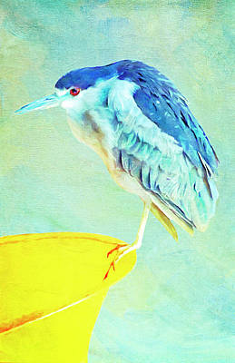 Digital Art - Bird On A Chair by Sandra Selle Rodriguez