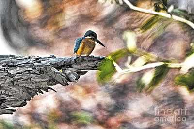 Kingfisher Digital Art - Bird On A Tree by Pravine Chester