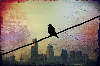 Bird On A Wire Art Print by Bill Cannon