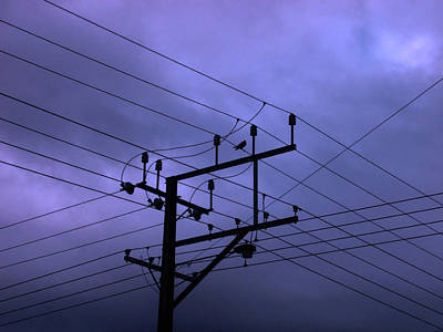 Photograph - Bird On A Wire by Mark Blauhoefer