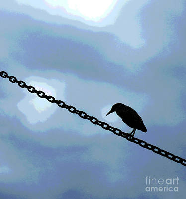 Chatham Digital Art - Bird On A Wire by Sharon Eng