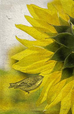 Bird On Sunflower Original by Betty Denise