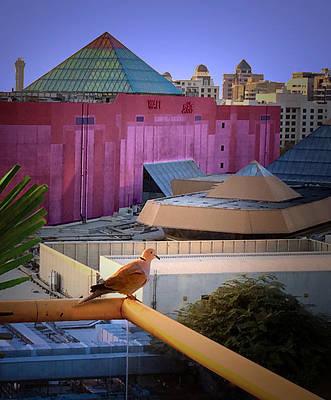 Photograph - Bird Over The View Dubai by Susan Hendrich