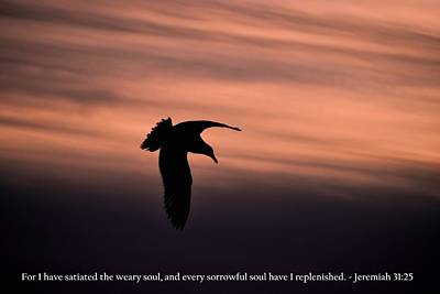 Photograph - Bird Silhouette With Jeremiah 31-25 Scripture by Matt Harang