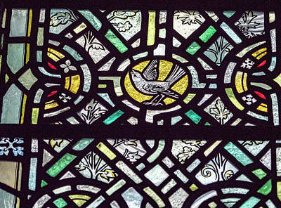 Photograph - Bird Stained Glass by Jean Noren
