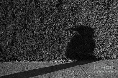 Photograph - Bird Woman Silhouetted by Jim Corwin