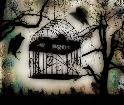 Starlings Digital Art - Birdcage by Gothicrow Images