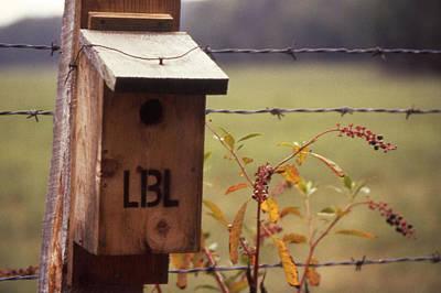 Birdhouse - 1 Art Print by Randy Muir