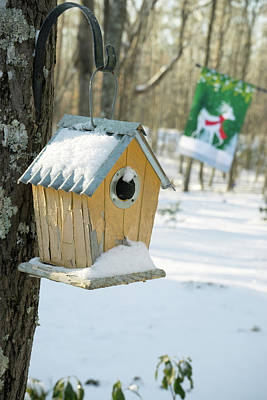 Photograph - Birdhouse And Deer Flag by Douglas Barnett