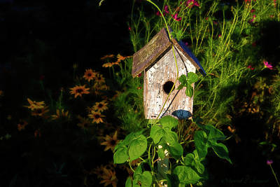 Photograph - Birdhouse At Dusk by David Arment