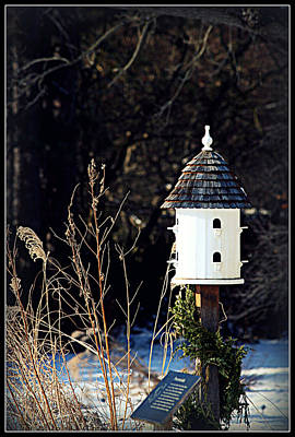 Photograph - Birdhouse by Elizabeth Babler