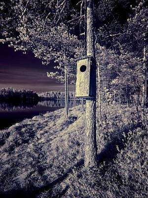 Photograph - Birdhouse For Rent by Jouko Lehto