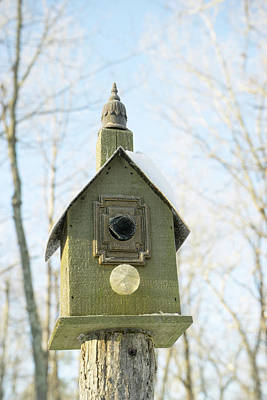 Photograph - Birdhouse In The Sky by Douglas Barnett