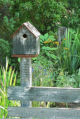 Photograph - Birdhouse Poster With Sunflower Views by Margie Avellino