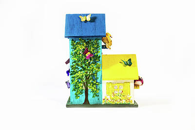 Food And Flowers Still Life Rights Managed Images - Birdhouse-right back view Royalty-Free Image by Lynne Albright