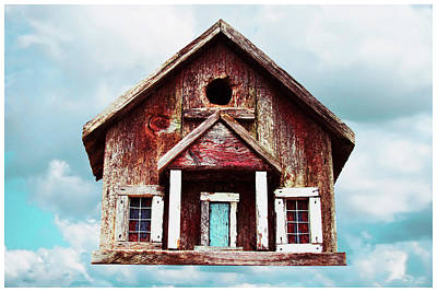 Photograph - Birdhouse by Tony Grider