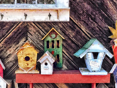 Photograph - Birdhouses For Sale by Susan Savad