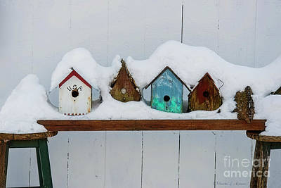 Photograph - Birdhouses In The Snow by David Arment